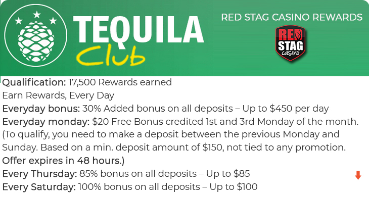 Red Stag Casino review.