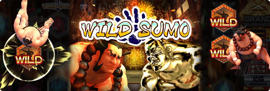 Wild Sumo online slot.