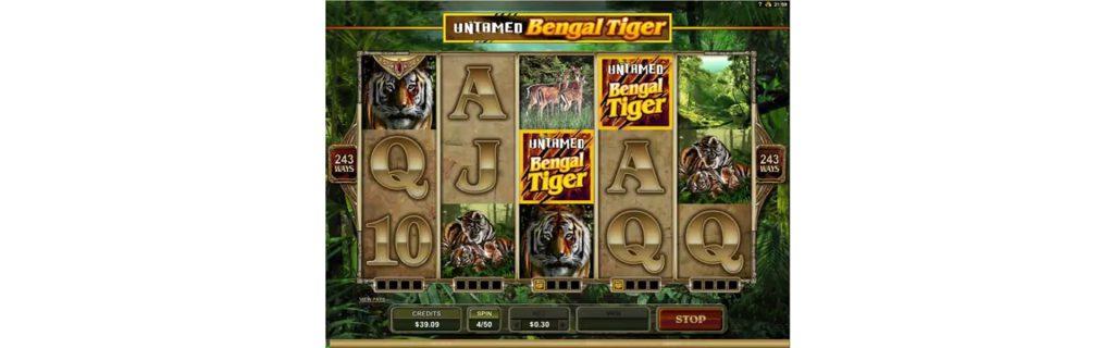 Bengal Tiger slot design.