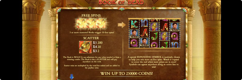 Book of the Dead slot.